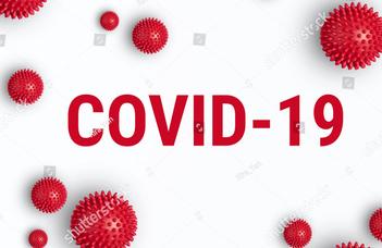 Jogi diagnózisok: a COVID-19 világjárvány hatásai a jogrendszerre kéziratvita